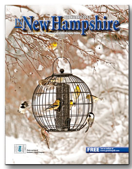 Download In New Hampshire - February 2017 (pdf)
